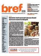 Bref Eco n°2382