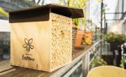 Pollinature - Bref Eco