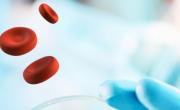 Erytech Pharma brefeco.com
