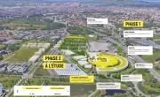 Plan masse Yellow Pulse