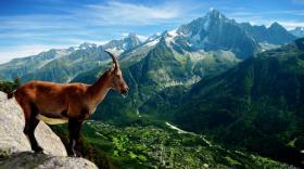 Les Pays de Savoie, destination prisée des groupes de touristes.