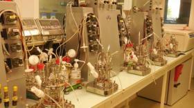 Carbios a développé un procédé de biorecyclage des plastiques et fibres en PET brefeco.com