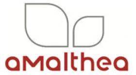 Amalthea glane trois nouveaux budgets