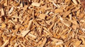 Filière bois rhônalpine : un emploi sur 5 est industriel