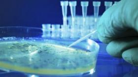 Oncologie: trois nouveaux lauréats du programme Preuve du Concept Clara 2021