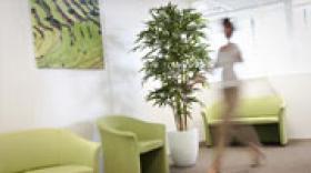 La société Deco Sens ouvre une agence à Lyon
