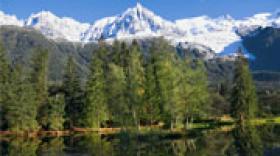 La DRAAF Auvergne-Rhône-Alpes confirmée à Clermont-Ferrand