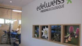 Edelweiss redonne du peps aux pressings