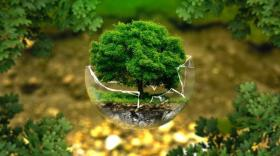 Tech4Earth: six projets au service de l'environnement
