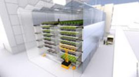 FUL, le projet de ferme urbaine à Lyon
