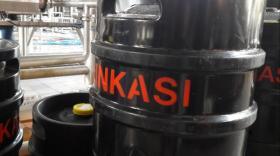 Ninkasi - bref eco
