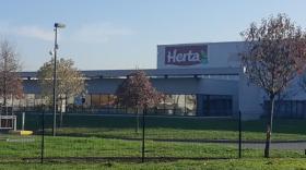 Site Herta Lozanne, brefeco.com