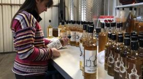 whisky Home Distillers - bref eco