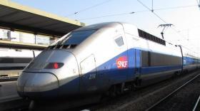 TGV Lyon-Paris à la gare de Lyon bref eco