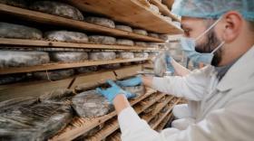 La fromagerie de Condat (Lactalis) - bref eco