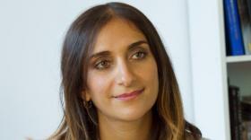 Diana Gochgarian, brefeco.com