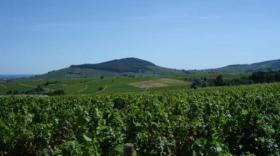 La Région renforce son plan d'aide au Beaujolais