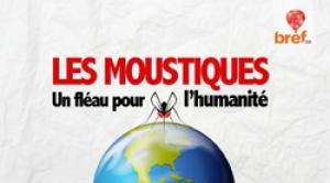 Aedes System et Aliapur, lauréats des Trophées Bref Eco de l'Innovation