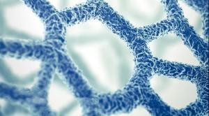 Nanobiotix et CM-CIC Innovation, une rencontre infiniment nano