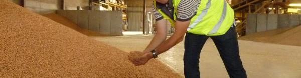 Pour Christophe Saint-Cyr, le marché du granulé bois croît doucement sans subir d'explosion.