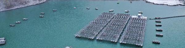poralu parc photovoltaique flottant - bref eco