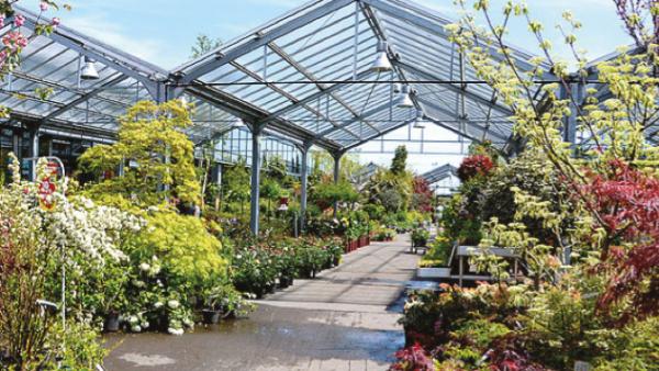 Botanic rachète les Pépinières de Bavent