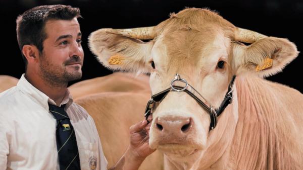 sommet de l'élevage 2019 - bref eco