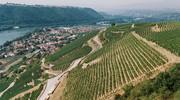 Un label Vignobles et Découvertes pour le nord de la Vallée du Rhône