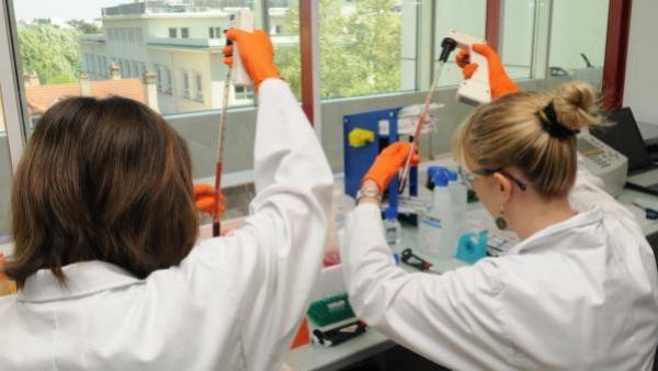 La société de stade clinique qui développe des thérapies innovantes en encapsulant des médicaments dans les globules rouges Brefeco