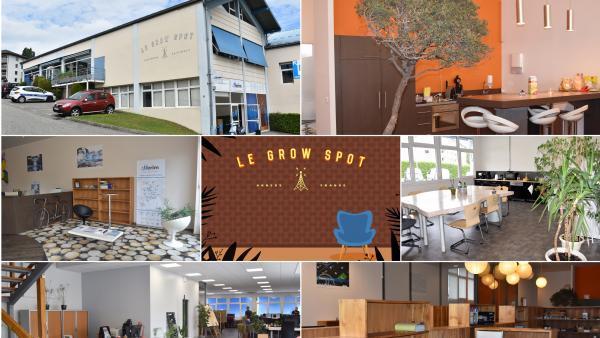 Grow Spot - bref eco