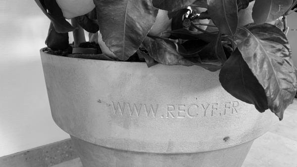recyf -bref eco