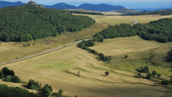 Nouveaux projets de compensation carbone pour La Poste