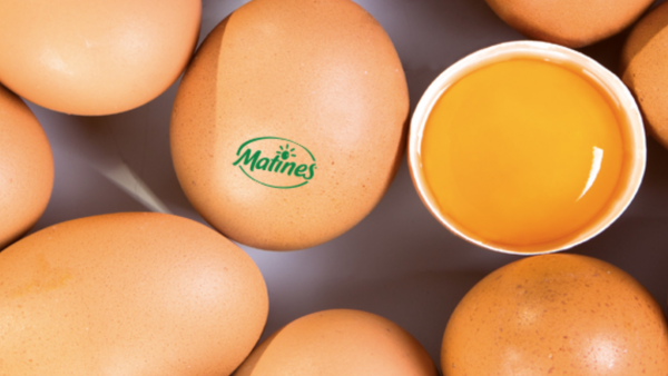 basculer la moitié de sa production sur l'œuf « alternatif » à la production en cage