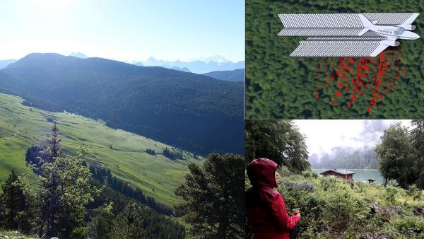 L'ONF Haute-Savoie va récolter des données précises sur les quelques 175.000 hectares de forêts du Département.