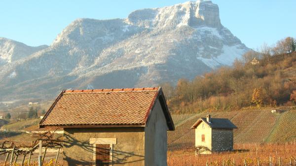 route pour les vignobles alpins - bref eco