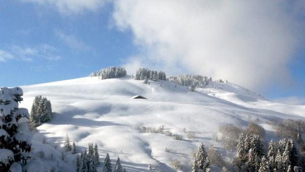 Savoie Mont-Blanc Tourisme - bref eco
