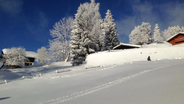 Lyon et Grenoble dans le viseur des stations des Hautes-Alpes