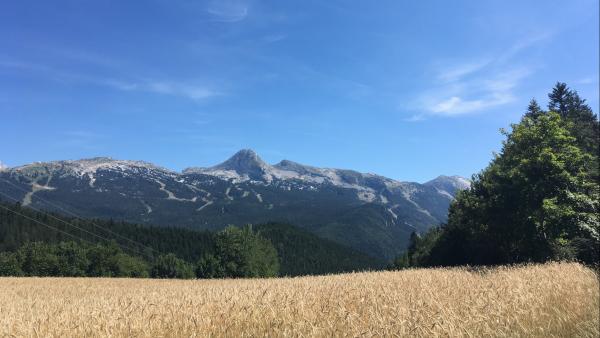 L'Insee confirme la bonne saison estivale en montagne