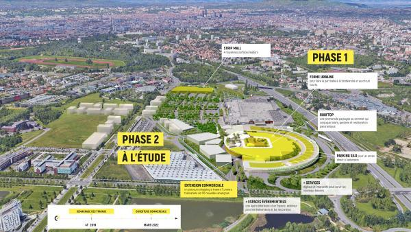 Plan masse Yellow Pulse